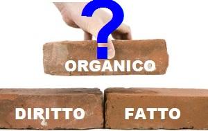 mattoni-organico2