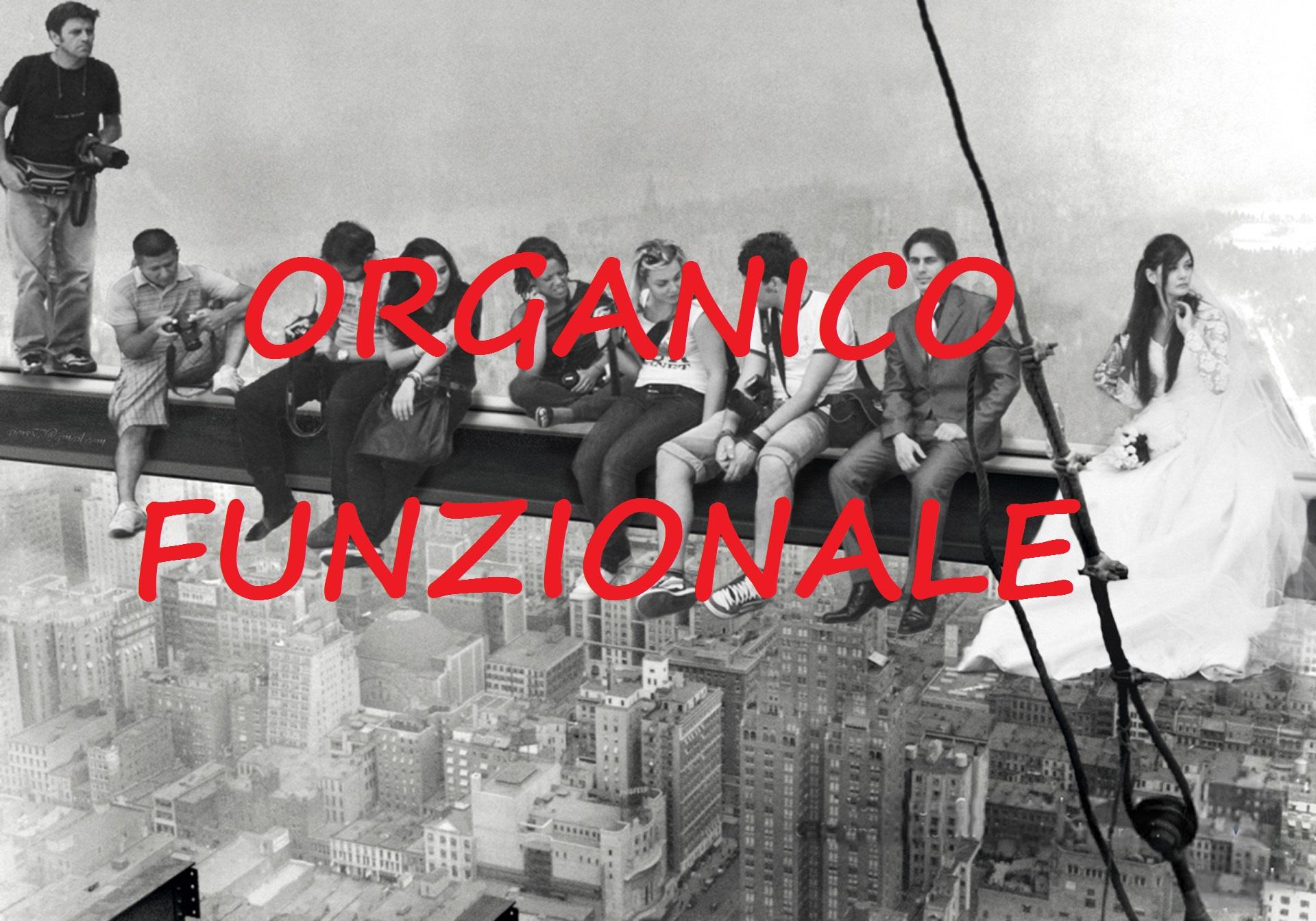 ORGANICO-FUNZIONALE1