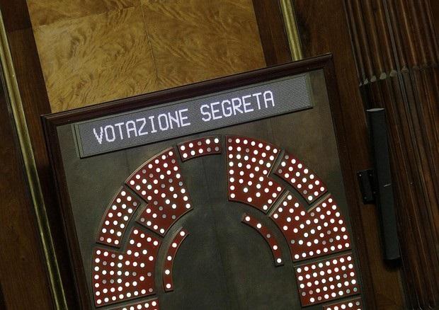 Senato-voto2
