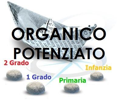 barchetta_organici2