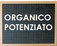 lavagna-ORGANICO6