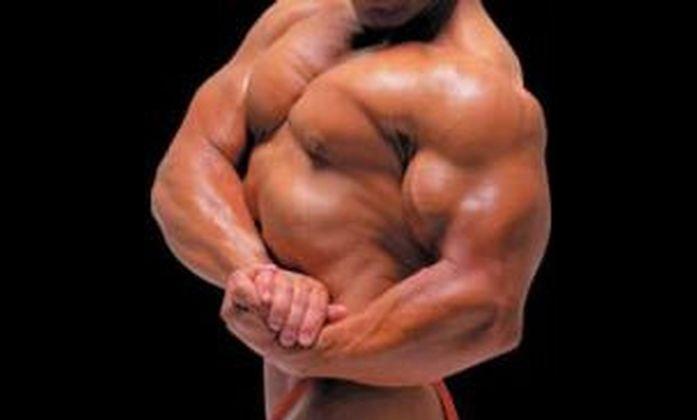 muscoli16