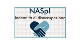 naspi_logo15a