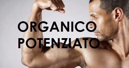 muscoli-organico7