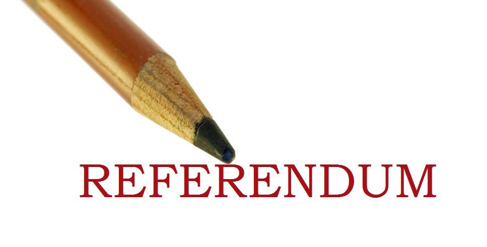 Matita-referendum1