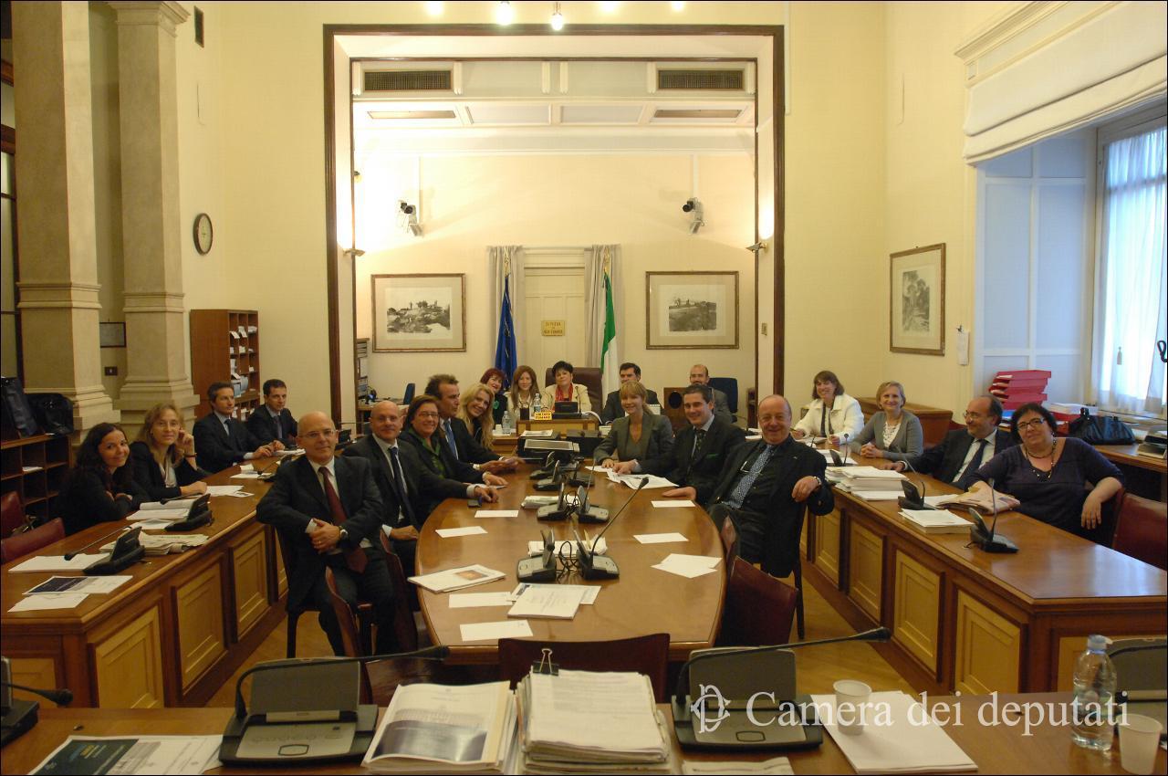 Camera-VII-commissione1