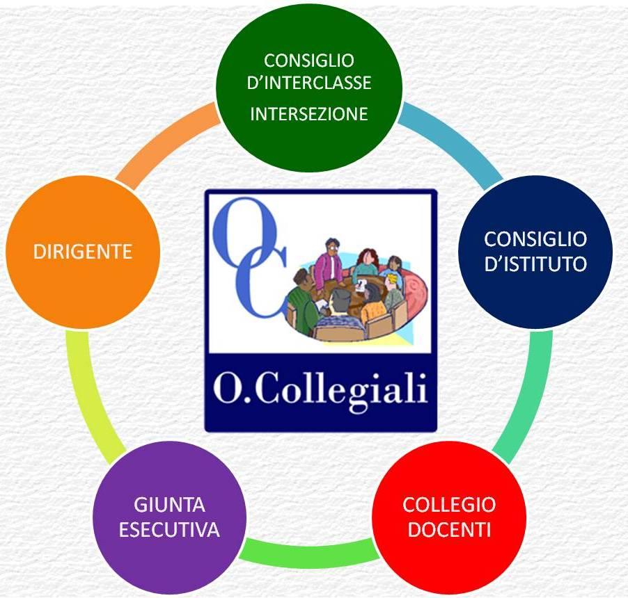 organi_collegiali1