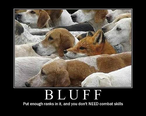 bluff-lupo