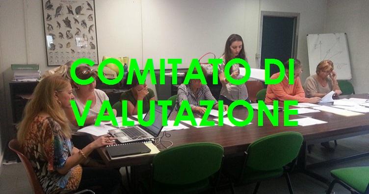 comitato-valutazione2A