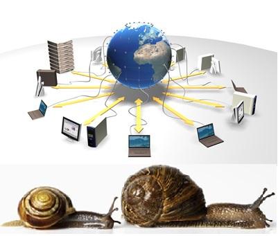 lumache-internet3