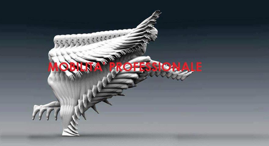 MOBILITA-professionale11
