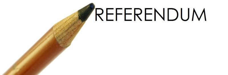 Matita-referendum3