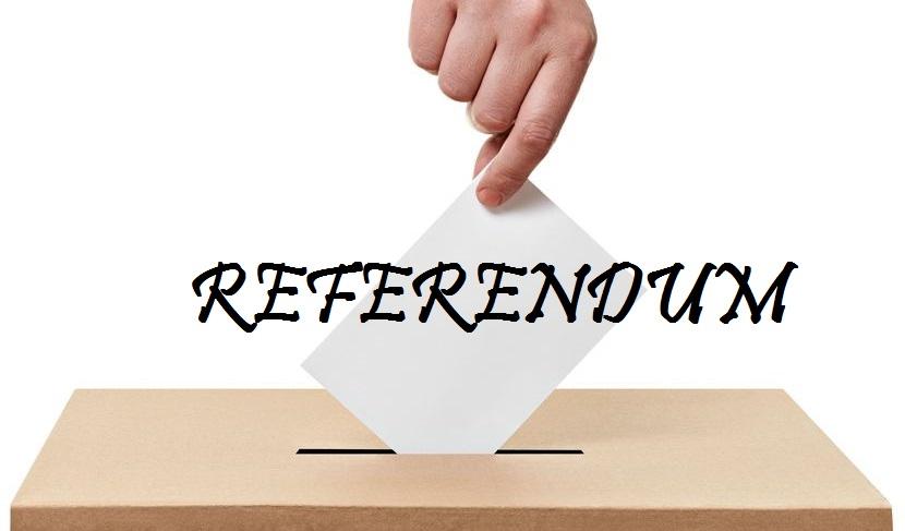 referendum8