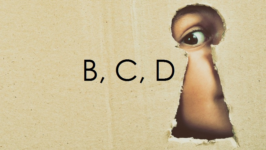 guarda-BCD25
