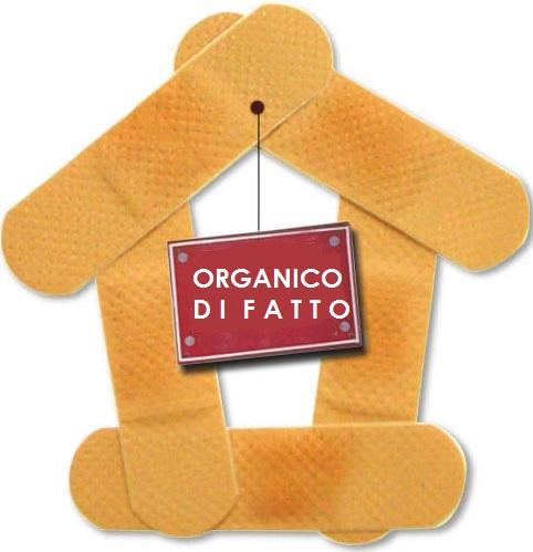 cerotto_organico1